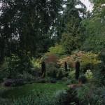 Marian's garden in summer